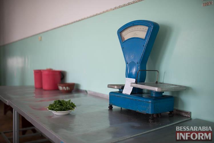 SME_0327 Социальный репортаж - вся правда о питании пациентов Измаильской ЦРБ (фото)
