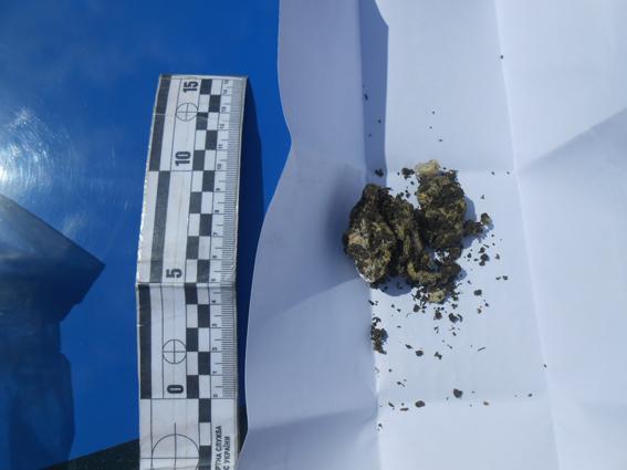 skachannye-fajly-4 В Измаиле житель Рени при задержании пытался проглотить марихуану