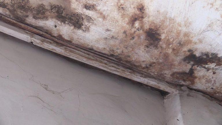 06f5f868-9475-4b65-8d1f-9e7545716814-768x432 Родственники погибших в Затоке в ужасе от аккерманского морга  (фото)