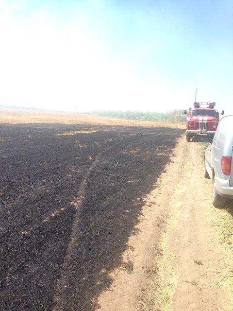13516620_243622156020503_4345070283211170597_n В Килийском районе спасли от пожара поле с урожаем пшеницы