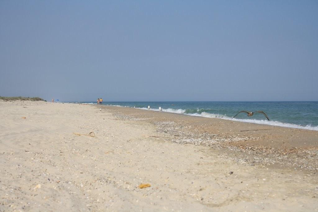 29116542-1024x683 Топ-10 морских курортов Одесской области (ОБЗОР)