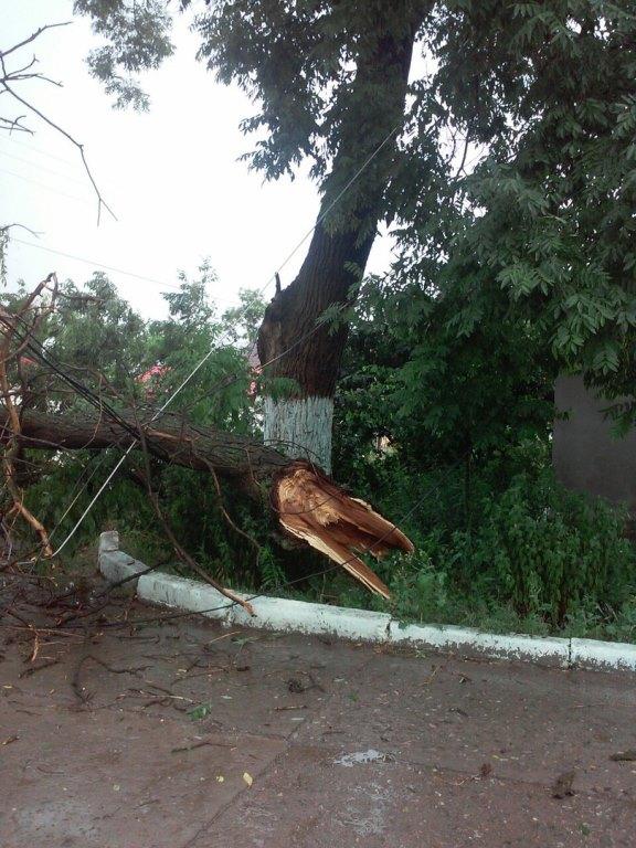 IcrqDTEc0Xo Шквальный ветер в Измаиле поломал деревья и пообрывал провода (ФОТО)