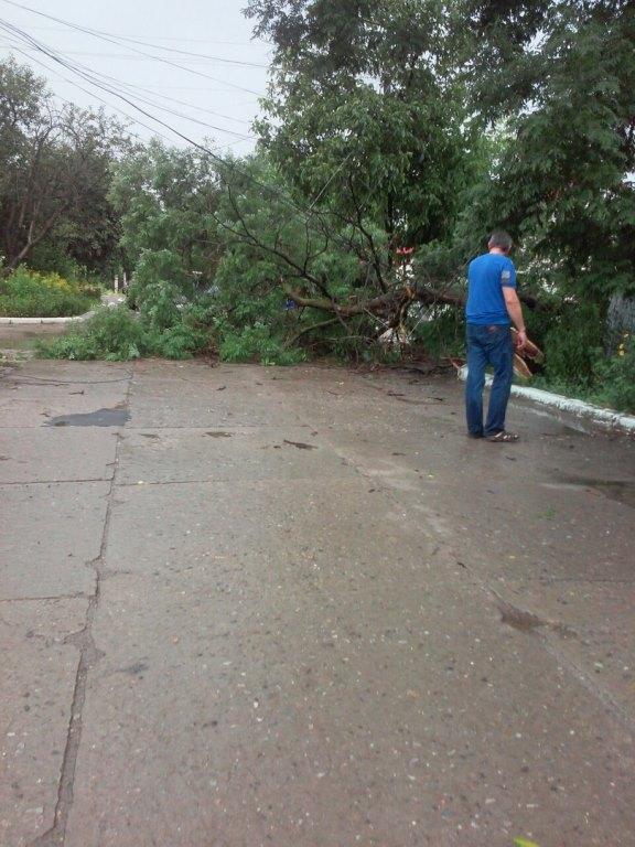 evfJNfxiMf4 Шквальный ветер в Измаиле поломал деревья и пообрывал провода (ФОТО)
