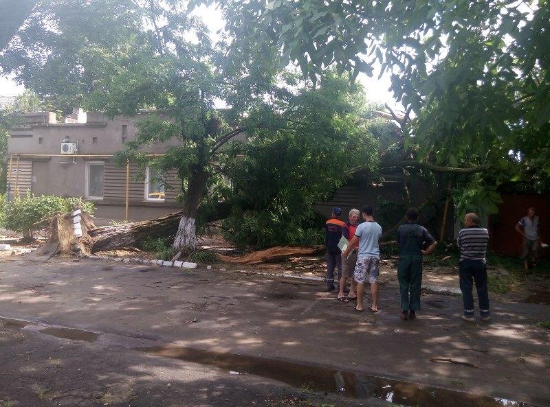 m54qbdHxxrY Шквальный ветер в Измаиле поломал деревья и пообрывал провода (ФОТО)