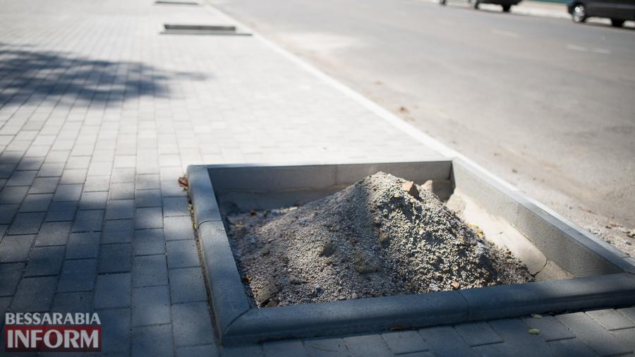 SME_3208 Измаил: на проспекте Суворова появились специальные лунки для саженцев и новые фонарные столбы (ФОТО)