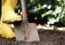 В Саратском районе женщина закопала в огороде своего новорожденного сына