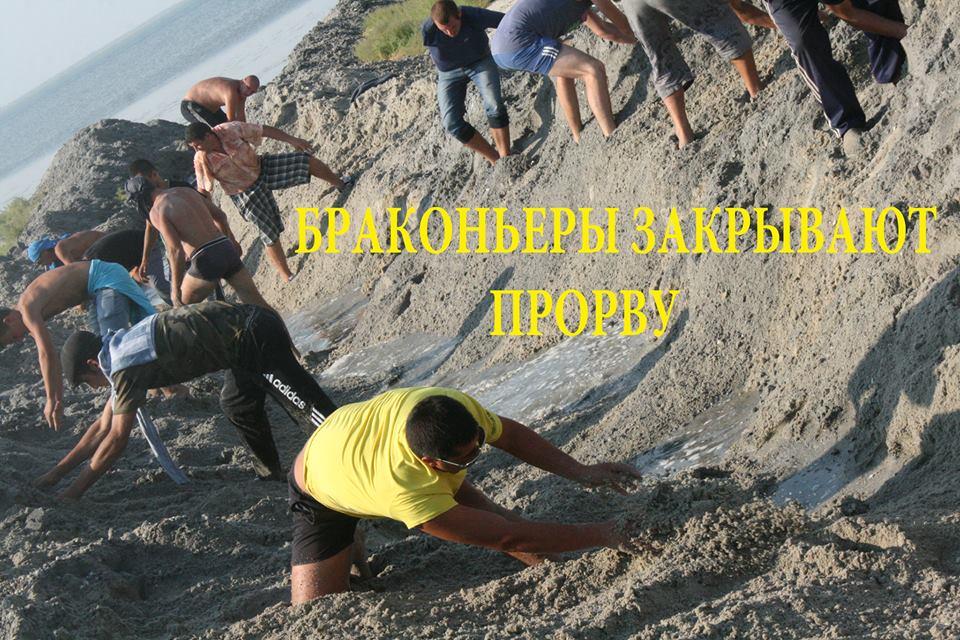 """14355561_590865061099590_2973532130502893764_n Браконьеры под прикрытием полиции не дают руководству НПП """"Тузловские лиманы"""" выполнять их обязанности"""