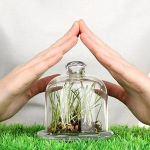 3f621d5571e0 Бактериальные средства защиты растений