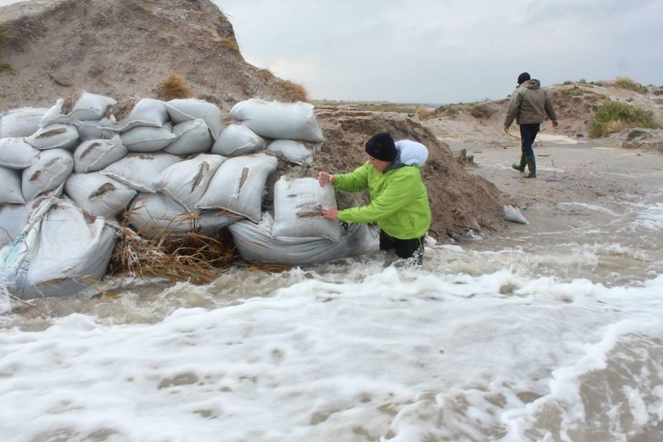 14642365_601980366654726_9220443715826356925_n Природу не обманешь: шторм соединил Черное море и Тузловские лиманы (фото)