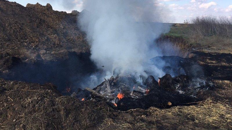 ACHS-Kilijskij-rajon2 АЧС в Килийском районе: в Приморском приступили к сжиганию поголовья свиней (фото)