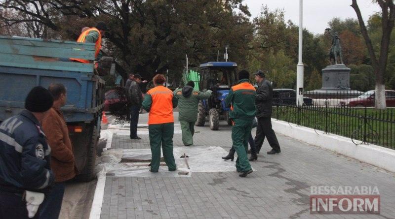 vysadka-derevev-Izmail2 Беспрецедентный проект: в Измаиле высаживают взрослые деревья (ФОТО)