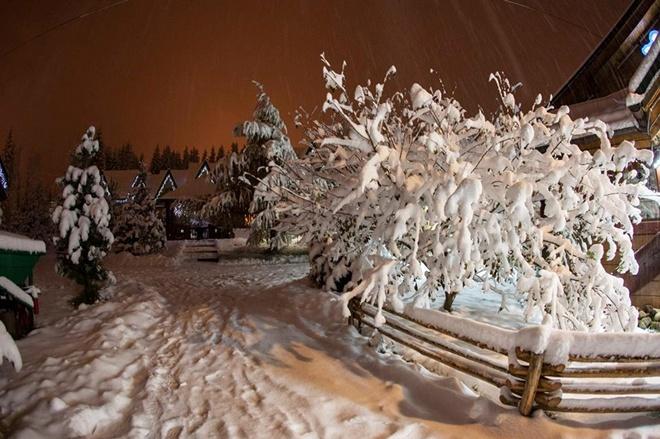 24218478 Захурделило: в Украину пришла зима