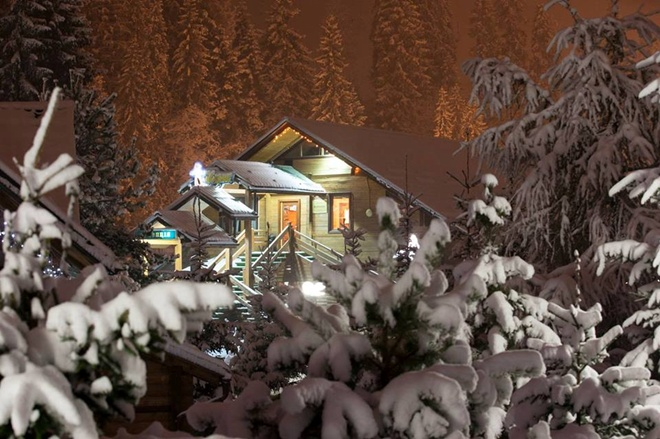 Захурделило: в Украину пришла зима