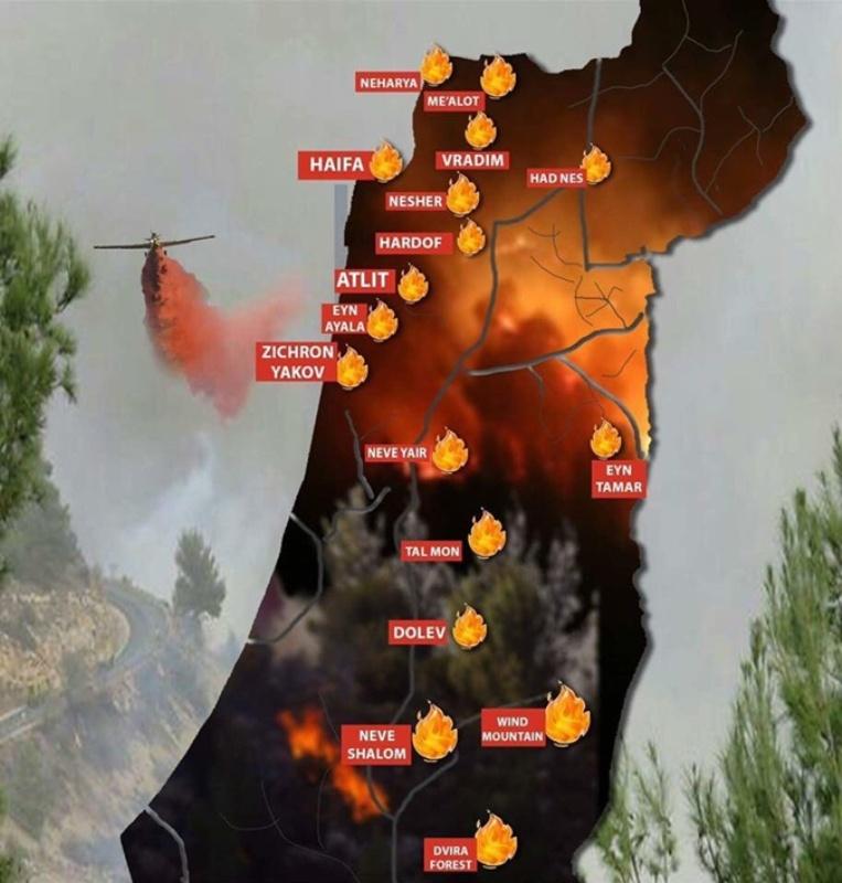Израиль в огне: националисты-арабы сжигают целые города (фото, видео)