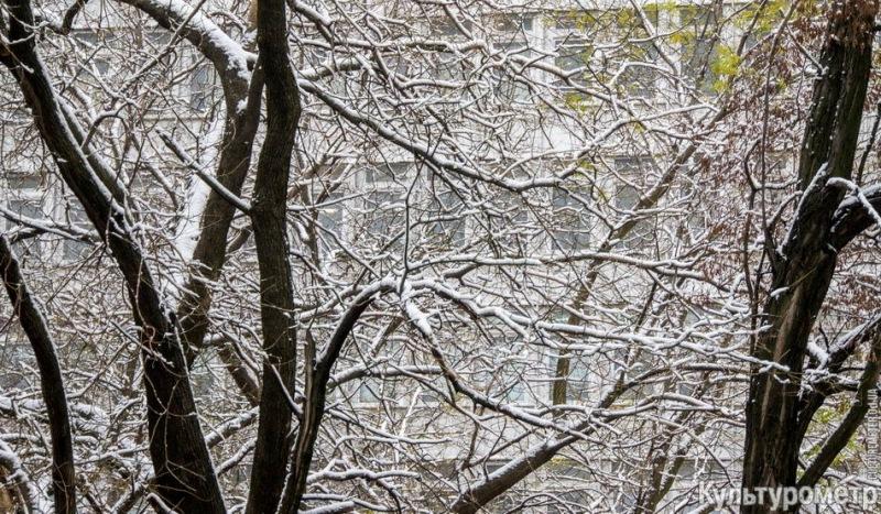 DSC06970 Зима уже на пороге Бессарабии (фото)