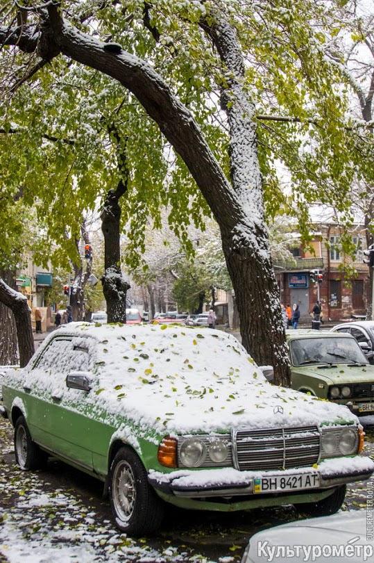 DSC07008 Зима уже на пороге Бессарабии (фото)