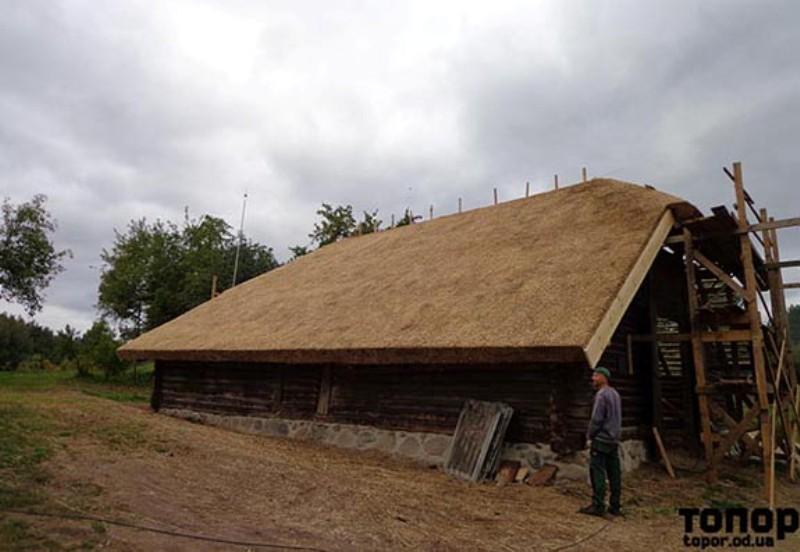 Болградские общественники ездили в Литву перенимать опыт строительства крыш из тростника (ФОТО)