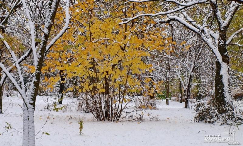 PZ164060_Kopirovanie-900x675-cbde Зима уже на пороге Бессарабии (фото)