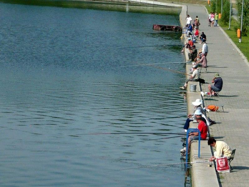 Pescuitul-pe-Lacul-Ciuperca-interzis-pana-la-finele-acestui-an Забегая наперед: тулчинский прототип измаильского Лебяжьего озера (фото, видео)