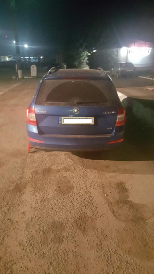Белгород-Днестровские пограничники задержали автомобиль, угнанный 15 лет назад в Словакии (ФОТО)