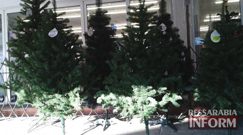 iskustvennye Измаильчане не спешат покупать елки и сосны - цены кусаются (фото)