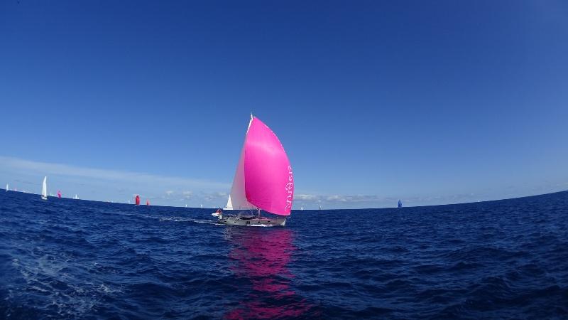IMG_0917 Уроженец Килийского района пересек Атлантику на яхте (фото)