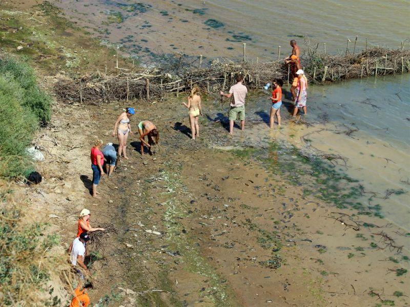 Татарбунарский р-н: экоактивисты воссоздают естественные пляжи (ФОТО)