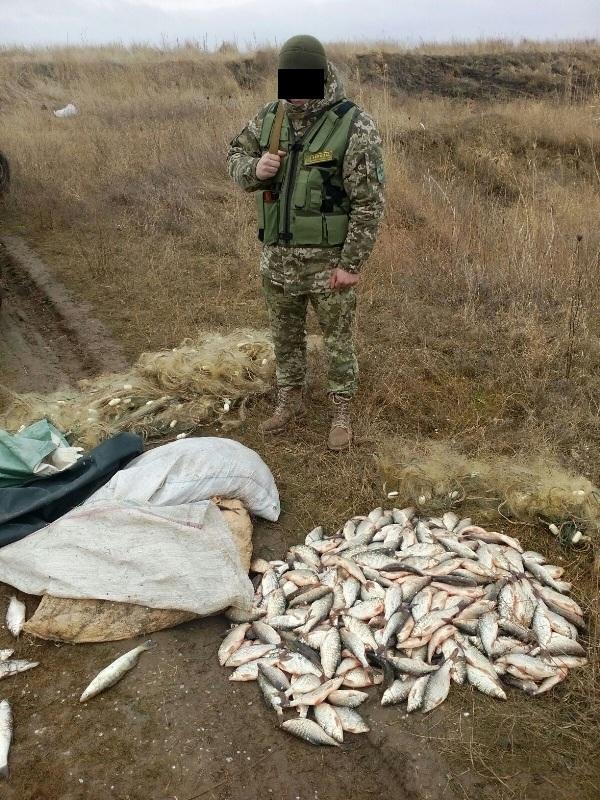 IMG-20170302-WA0007 Пограничники поймали на канале Дунай-Сасык браконьеров с уловом на сумму почти 100 тыс грн