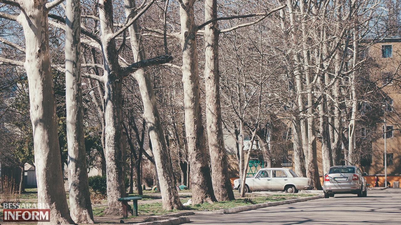 В Измаиле погода шепчет (фоторепортаж)