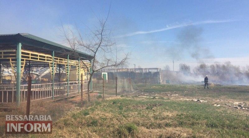 Опять горим: в Измаиле пылает территория возле аллеи Дружбы народов