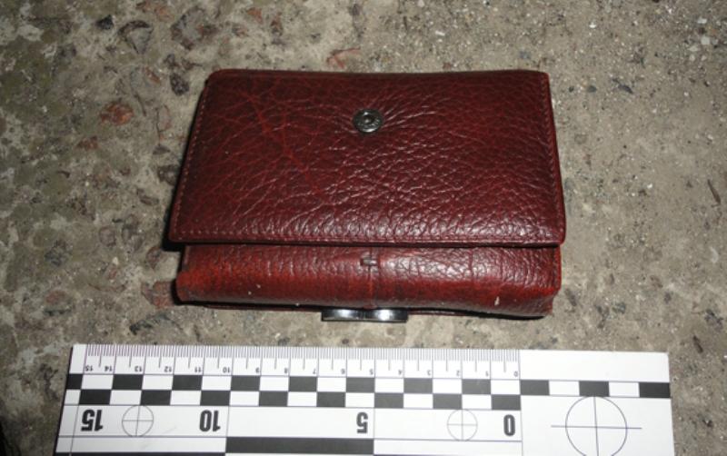 PM532image002 Жестокие дети: в Килии двое подростков грабили жертв и колотили по голове деревянной палкой
