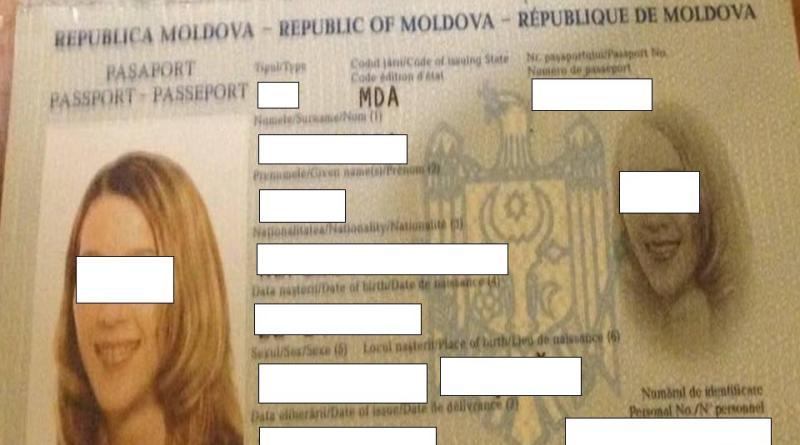 Pasport В Староказачьем четырехлапый пограничник обнаружил наркокурьера из Молдовы