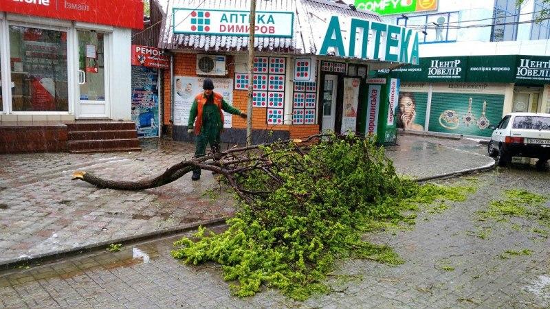 0wBQcrpH_oY В Измаиле из-за шквального ветра ветки падают прямо на автомобили