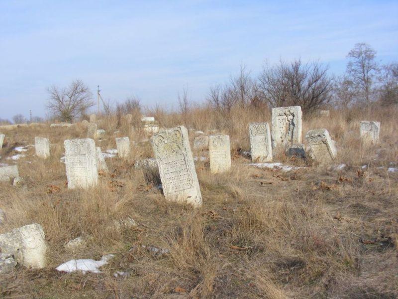 16406471_269152663520795_7461776989295146031_n ЛЕВ в Килии: волонтеры приложили руку к восстановлению древнего еврейского кладбища