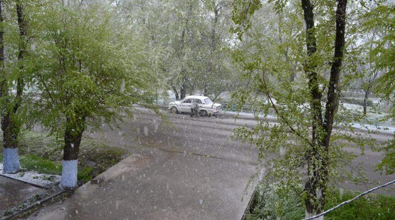 18010865_405769569791796_1711320501084273765_n Арциз заметает снегом