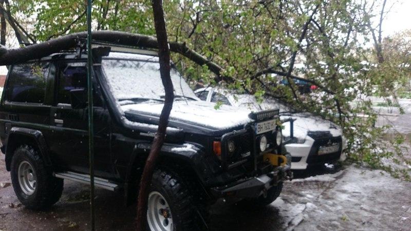 9hytri9DnnM В Измаиле из-за шквального ветра ветки падают прямо на автомобили