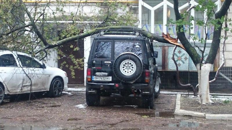 AXUbOAeGn8Q В Измаиле из-за шквального ветра ветки падают прямо на автомобили