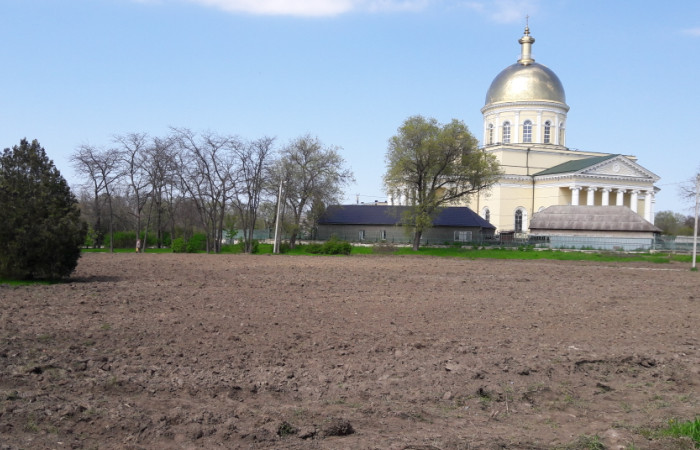 Bolgrad-Sobor Не сакуры, но тоже хорошо: в Болграде решили высадить дубовый парк