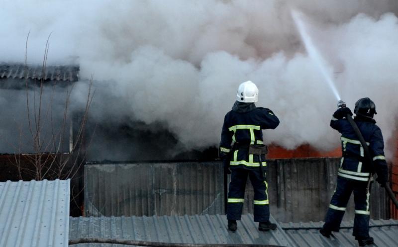 DSC_0095 В Одессе в следствии масштабного пожара сгорело 15 дачных домов