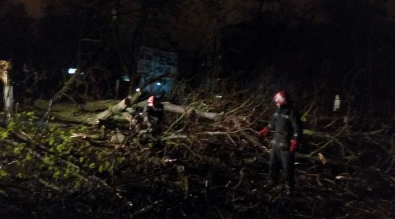 GSCHS В Болграде дороги оказались перекрыты из-за упавших деревьев