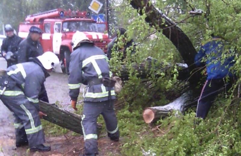 В Болграде дороги оказались перекрыты из-за упавших деревьев