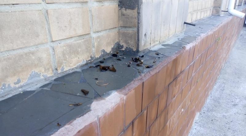 Пьяные тесть с зятем пытались сжечь здание РГА