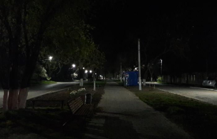 Sobornyj-prospekt-v-Bolgrade Не сакуры, но тоже хорошо: в Болграде решили высадить дубовый парк