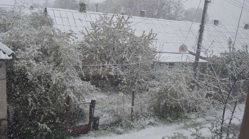 Арциз заметает снегом