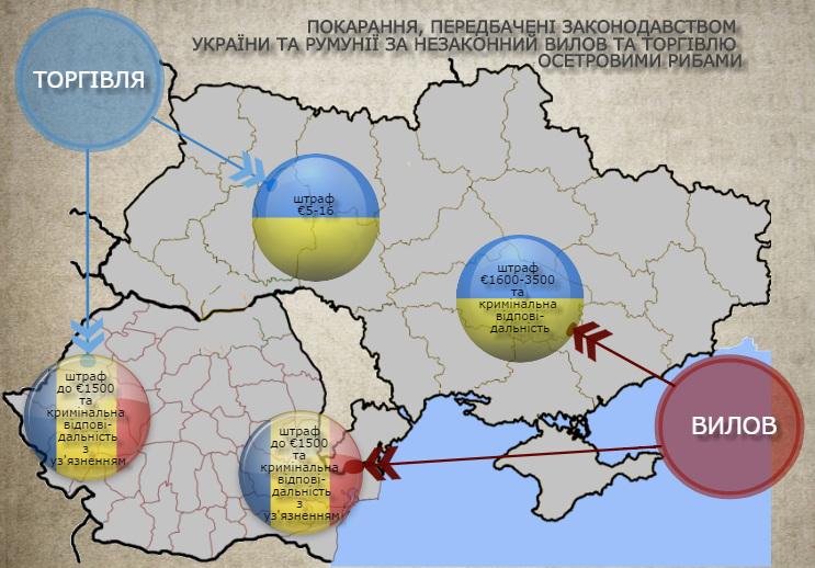 2017-05-29_Workshop-Odessa_1 Украина и Румыния объединились в деле спасения осетровых рыб