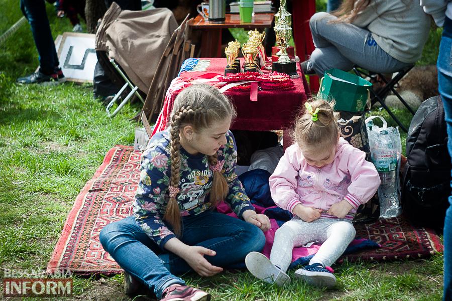 IMG_0479 Полный парк четвероногого счастья: в Измаиле прошел ежегодный племенной смотр собак