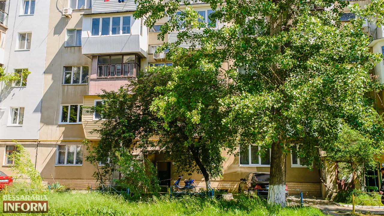 SME_5230 В Измаиле в спальном районе в клумбе с цветами нашли взрывоопасный предмет