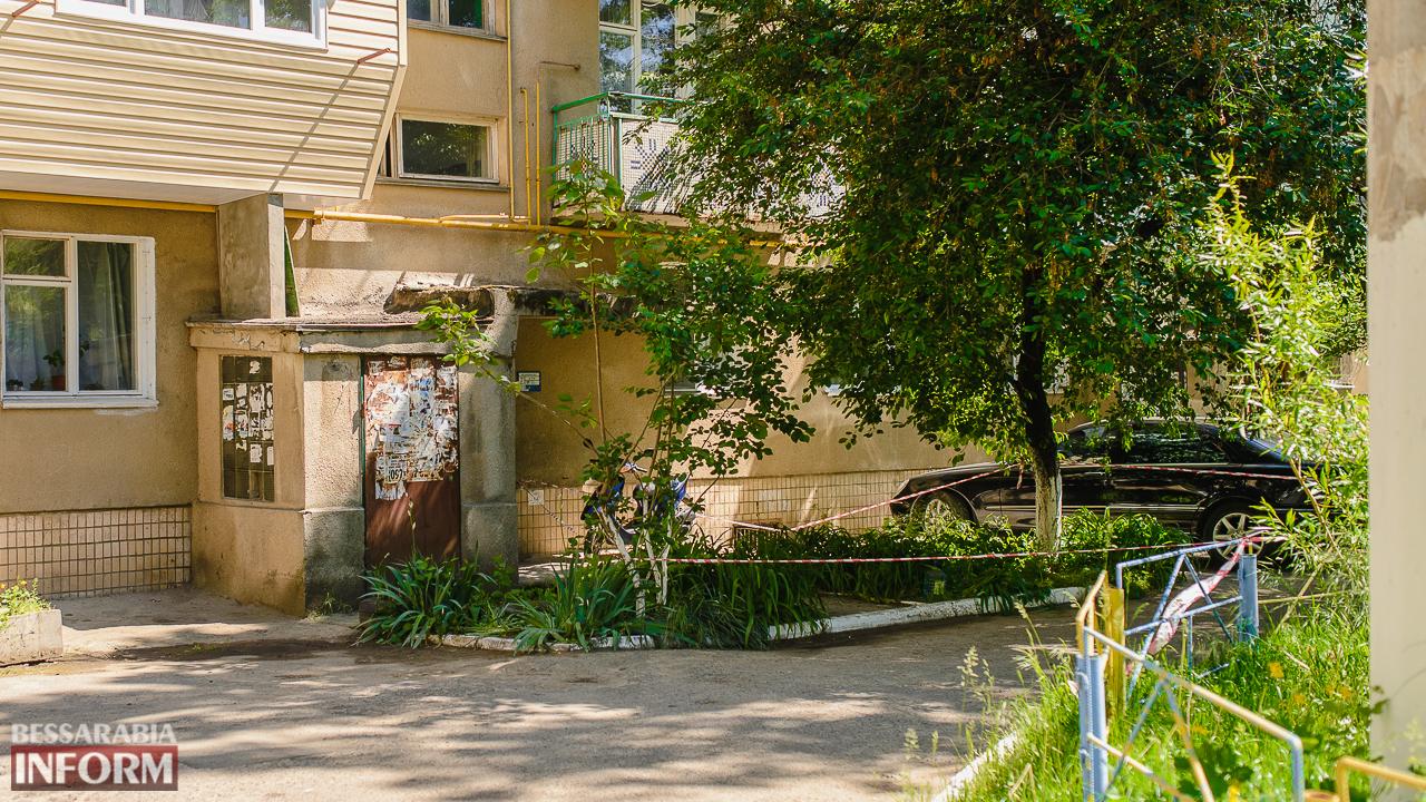 SME_5231 В Измаиле в спальном районе в клумбе с цветами нашли взрывоопасный предмет