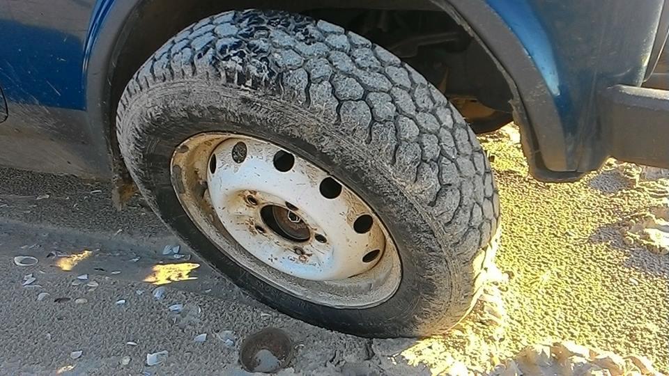 """Браконьеры пытались похитить колеса со служебного автомобиля нацпарка """"Тузловские лиманы"""""""