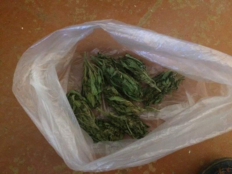 За хранение наркотиков двум жителям Измаила светит до трех лет тюрьмы